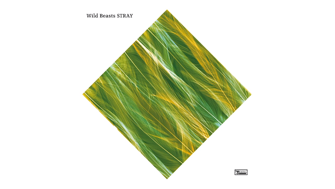 Wild Bests
