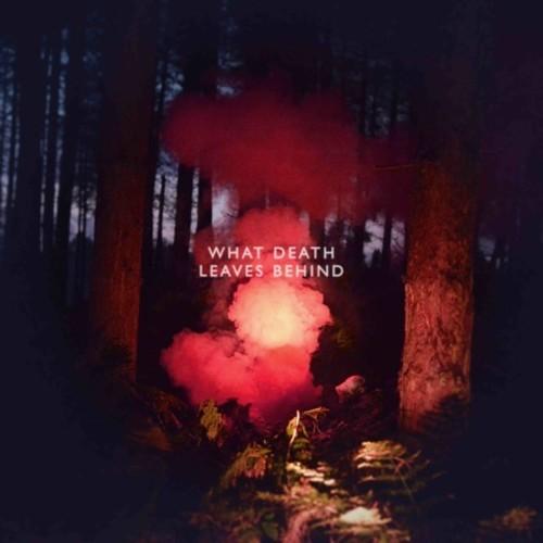 Los Campesinos - What Death Leaves