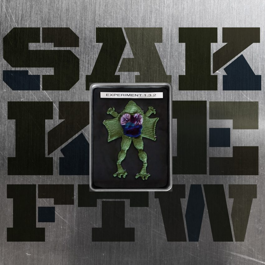 sakkie-experiment-cover (1)
